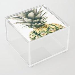 Pineapple Close-Up Acrylic Box
