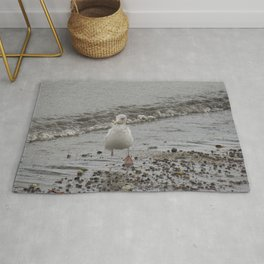 Speckled Gull on the Walking on the Shoreline Rug