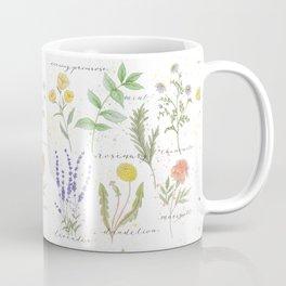 Medicinal Herbs Coffee Mug