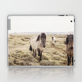Horse Photograph in Color Laptop & iPad Skin