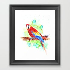 Watercolored Parrot Framed Art Print