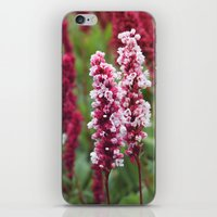 norway iPhone & iPod Skins featuring Norway I by Cynthia del Rio