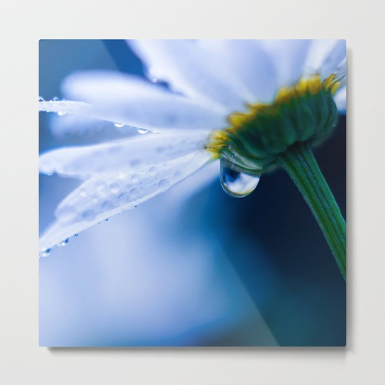 Tear of Dreams Metal Print