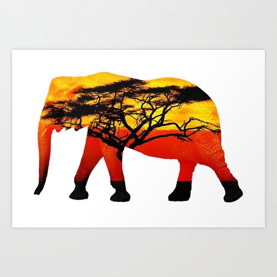 Elephant view Art Print