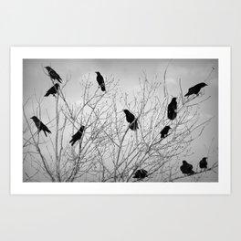 A Murder of Crows Kunstdrucke