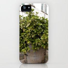 Inne yard iPhone Case