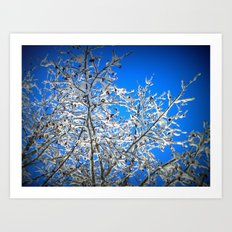 White Branches, Blue Sky Art Print