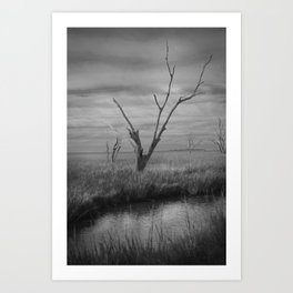 Death in the Afternoon Art Print