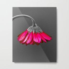 Flower   Flowers   Melancholia   Drooping Flower Metal Print