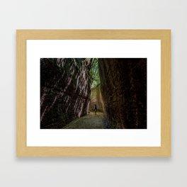 Via Cava, - ancient Etruscan path cut in tuff Framed Art Print