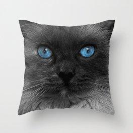CATTURE Throw Pillow