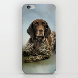Waiting For A Cue - German Shorthaired Pointer iPhone Skin
