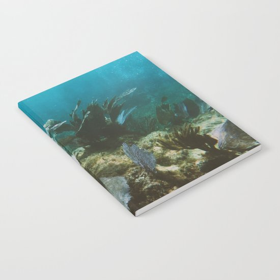 Mexican Caribbean Sealife Notebook