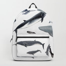 Whales all around Backpack