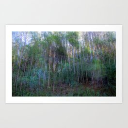 Forest for the Trees for the Forest Art Print