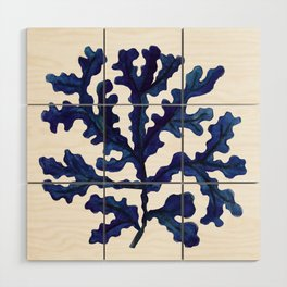 Sea life collection part I Wood Wall Art