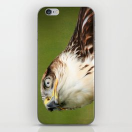 Ferruginous Hawk I iPhone Skin