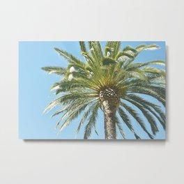 Under the Palm Tree Metal Print