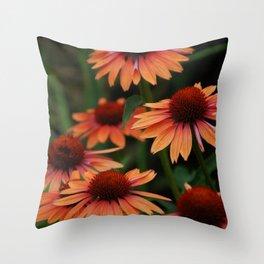 Orange Cone flowers Throw Pillow