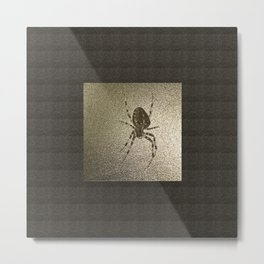 Golden cross spider Metal Print
