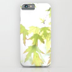 Soft Maple Leaves iPhone 6s Slim Case