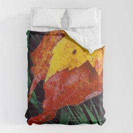 Autumn Leaves After the Rain Comforters