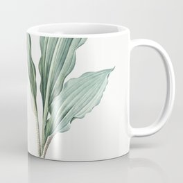 Branched St Bernards lily  from Les liliacees (1805) by Pierre Joseph Redoute (1759-1840) Coffee Mug