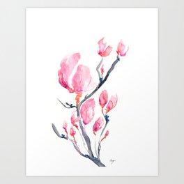 Japanese Magnolia Art Print