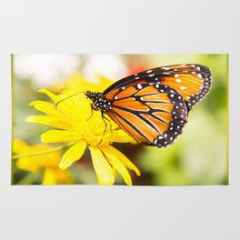 Happy Monarch Butterfly Rug