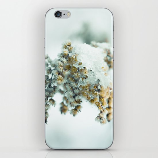 Frost & beauty iPhone & iPod Skin