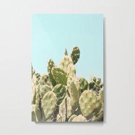 Cactus Summer Metal Print