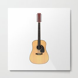 12 String Guitar Metal Print