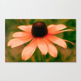 Vibrant Orange Coneflower Canvas Print