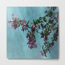 Pink Over Turquoise by CheyAnne Sexton Metal Print