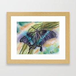 Butterfly Bamboo Framed Art Print