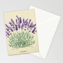 Vintage botanical print - Lavender Stationery Cards