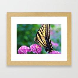 The Butterflies Garden Framed Art Print
