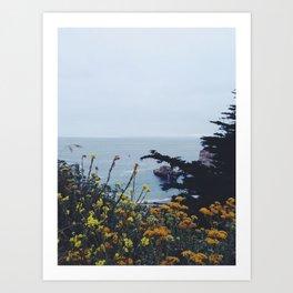 Floral Coast at Dusk Art Print
