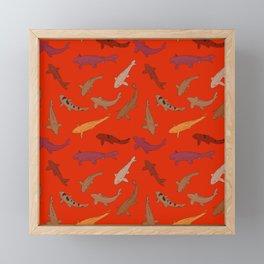 Koi carp. Brown orange yellow black outline on red background Framed Mini Art Print