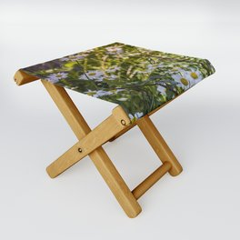 Continuous Matters Folding Stool