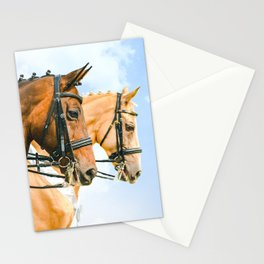 Side view portrait of two braided horses, blue sky as a background. Stationery Cards
