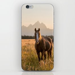 Horses Grazing Below the Tetons iPhone Skin