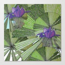 Australica Fan Palm Canvas Print