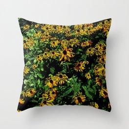 Electric Black-eyed Susans DPGPA151026a-14 Throw Pillow