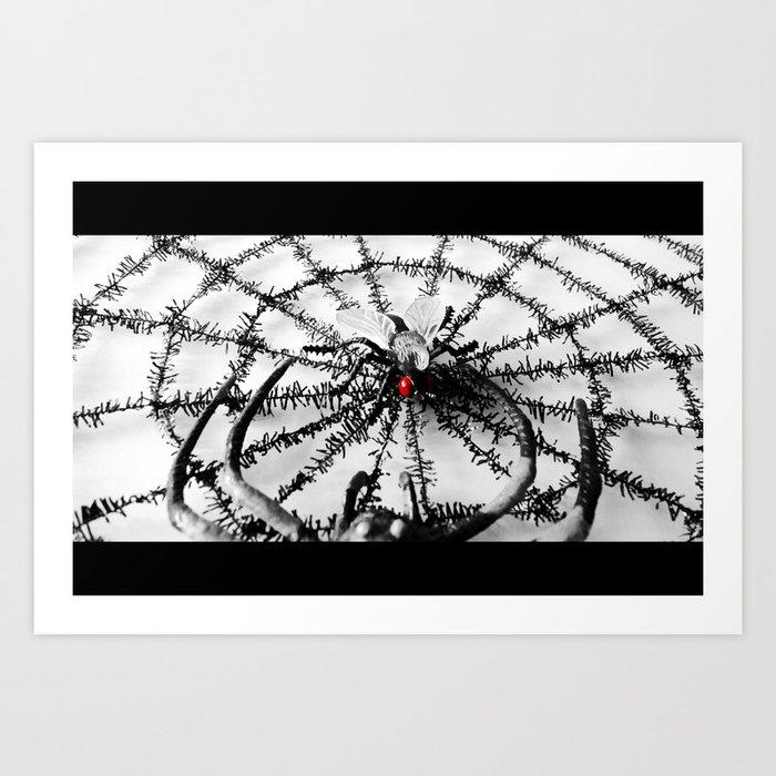 The Fly Art Print