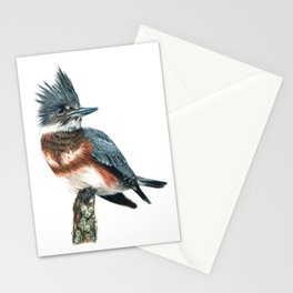 Belted Kingfisher Stationery Cards