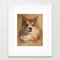 sasha grey Framed Art Prints featuring Sasha by Photography and Fine Art by Pamela