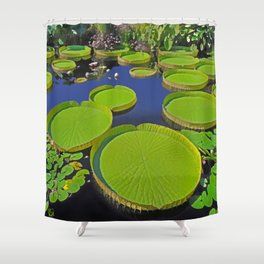 Water Platters Shower Curtain