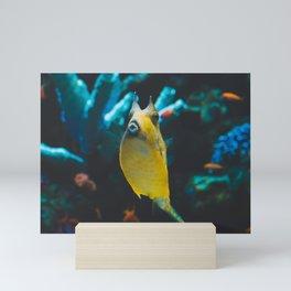 Longhorn Cowfish 001 Mini Art Print