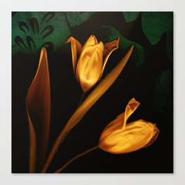 Tulips of the golden age Canvas Print